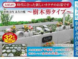 少林寺樹木葬